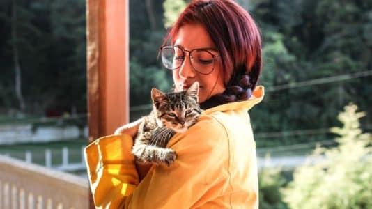 voyager avec son chat à l'étranger